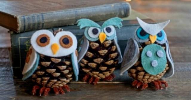 PineconeOwls