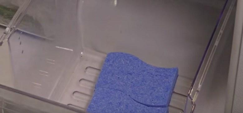 SpongesInVegetableDrawer