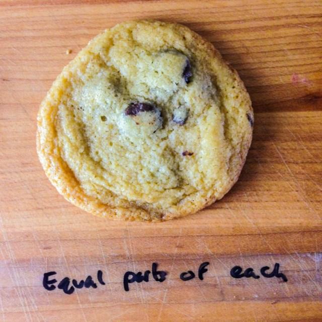 scienceofcookies-1-8a