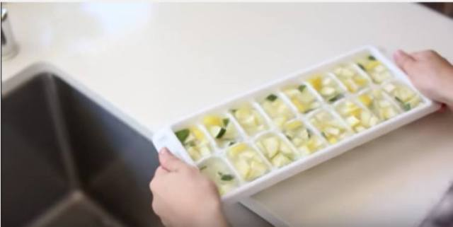 citrus ice cube tray