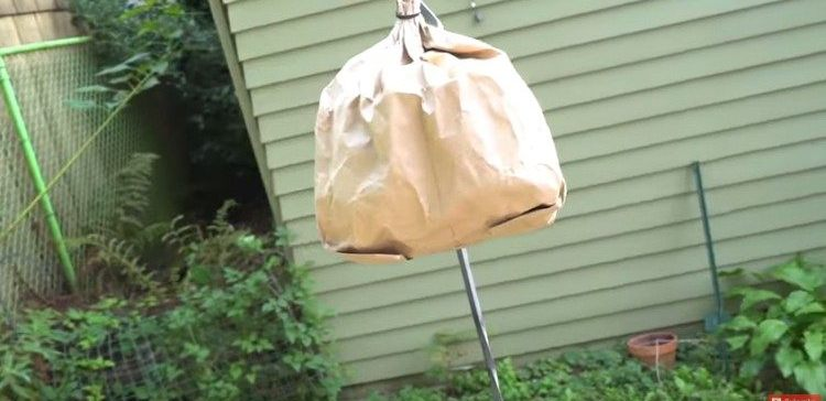 How to hack a regular paper bag.