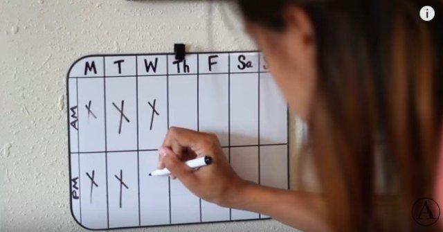 White board checklist of dog's feeding times.