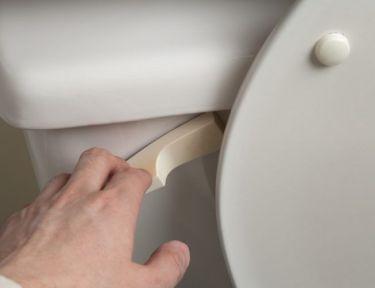 Hand flushing toilet.