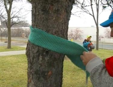 Image of man tying scarf around tree.