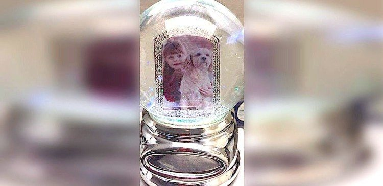 Snow globe which was reunited with owner.