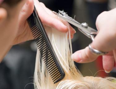 Image of woman getting haircut.