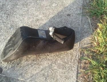 Image of broken shoe heel.