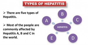 Types of Hepatitis