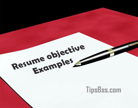 Resume objective examples - Tips Tricks  Tutorial