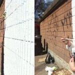 TTT 310: Close Calls With White Walls