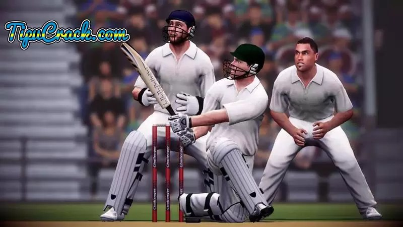 Oval Mirror Perth Ashes Cricket 2013 Full Pc Game Free Download