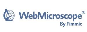 Fimmic_wm_logo