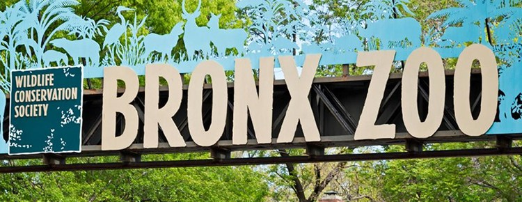 bronx-zoo-brew-at-the-zoo-feature