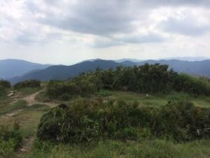 野坂岳山頂から南。中央の遠くにとんがっているのが三国山。その右に一段低くポチッと尖っているのが赤坂山。
