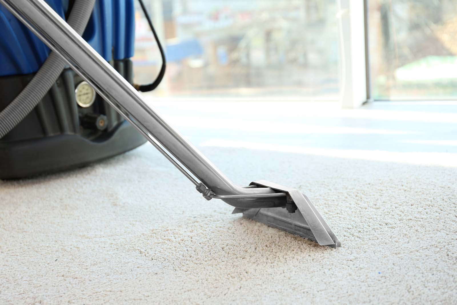 Carpet Cleaning Carpet Cleaning Castle Rock Co Carpet Cleaners Castle Rock Co