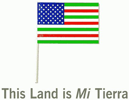 TMEP - american flag background for word document