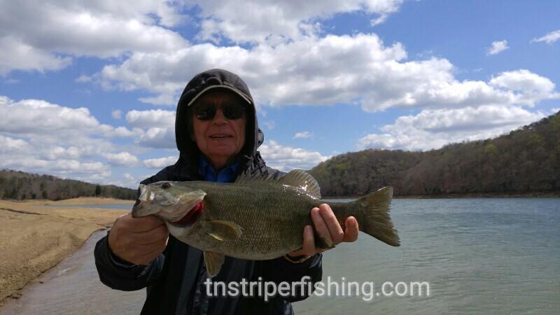 Norris lake dave dave james jeff 4 3 2016 jay 39 s for Lake james fishing