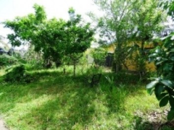 house-for-sale-cunupia-backyard