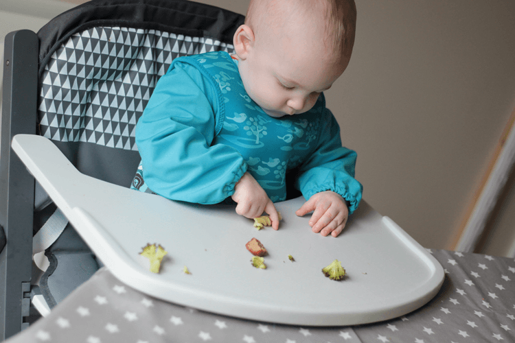 Large easy to clean tray on the Babymoov high chair