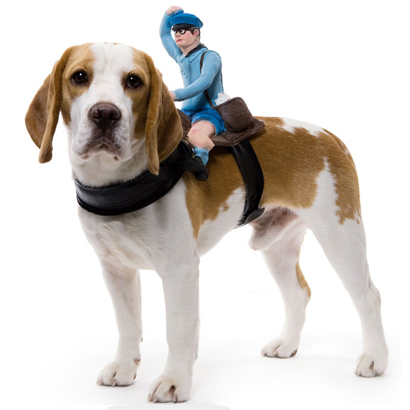 Dog-Riders-Pet-Costumes-1