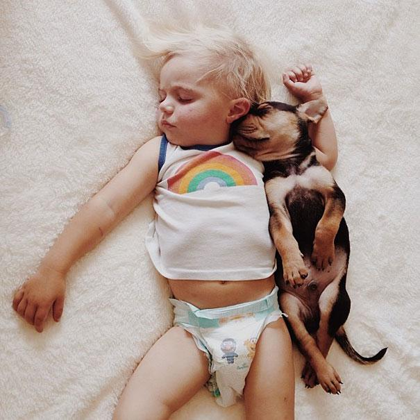 toddler-naps-with-puppy-theo-and-beau-7