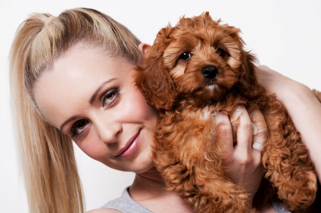 Quinn the model dog