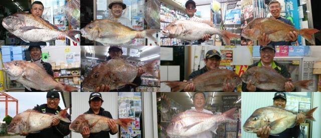 真鯛の釣果画像