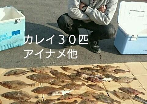4月10日釣果☆船カレイ