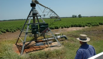 Texas crop, weather for July 6, 2011