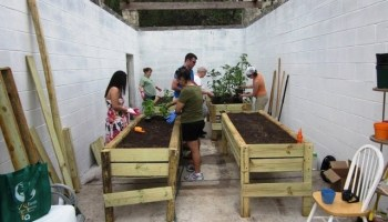 Urban gardening's roots spreading throughout Texas