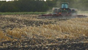 Texas crop, weather for Aug. 9, 2011