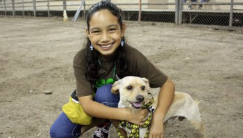 4-H Dog Clinic slated Dec. 1 in Mercedes