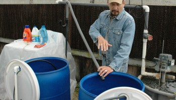 AgriLife Research scientist hopes soapy water testing lathers up statewide interest