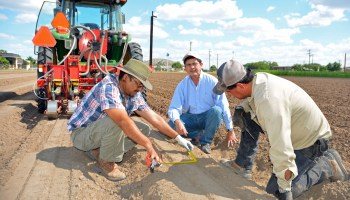 Irrigation testing in Weslaco could help South Texas vegetable growers