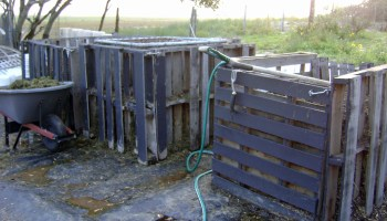 First area Backyard Basics program to focus on composting for Coastal Bend gardeners
