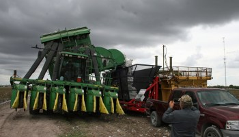 Lower Rio Grande Valley cotton harvest off to a good start