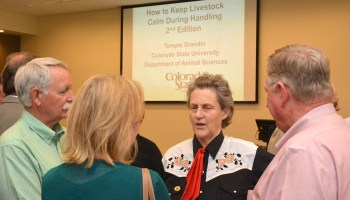 Temple Grandin stresses the little things on ways to handle livestock