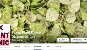 'Liking' this Facebook page may help treat what you don't like on your plants