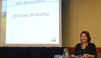 Texas Farmers encouraged to contact local Farm Service Agency office