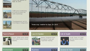 AgriLife Today goes daily with news from Texas A&M AgriLife Extension, Research