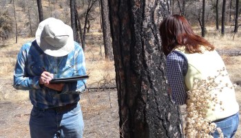 Wildfire maps in the hands of landowners could be a management tool