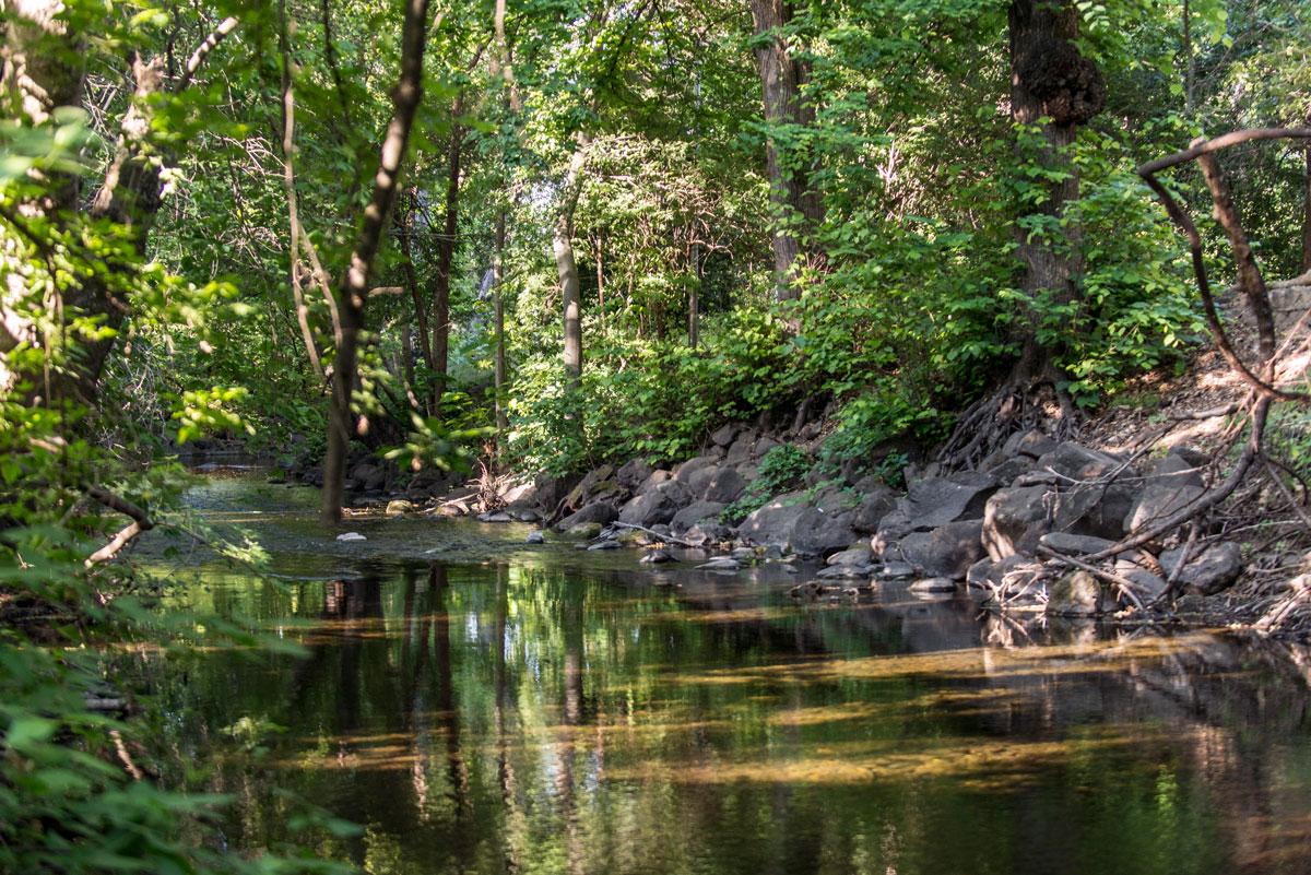 Big Chico Creek (Jason Halley)