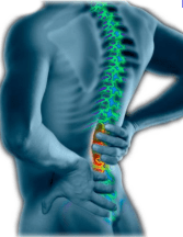 The Real Causes of Spine pain