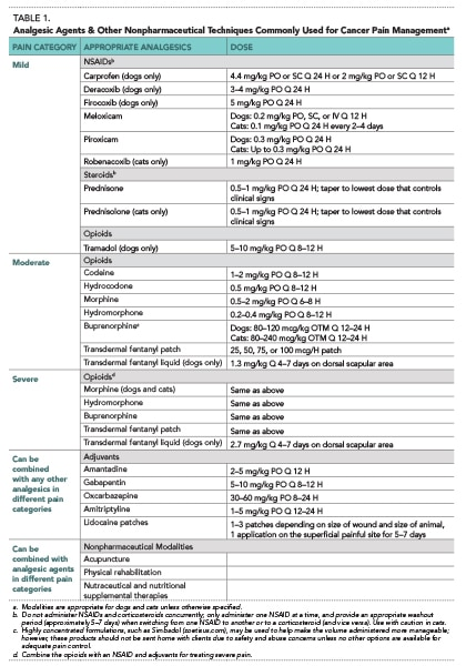Elements of Oncology - Strategies for Managing Cancer Pain in Dogs