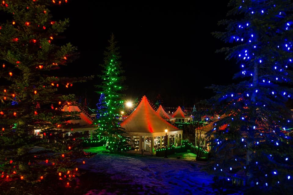 Tree Lighting London Ontario Places To See Christmas Lights & Holiday Displays In