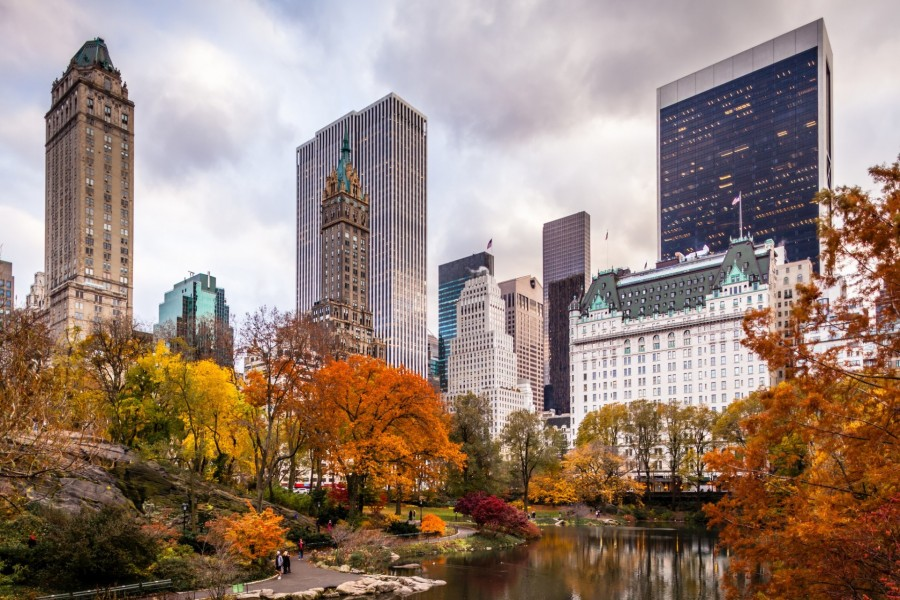 4k Central Park In The Fall Wallpaper Edificios De Nueva York Vistos Desde Central Park Ee Uu