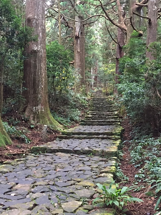The enchanting Daimonzaka part of the path below Nachi Taisha shrine at the bottom of the hill. This 600 m long path includes the most perfectly preserved part of the Kumano Kodo and is over 1,000 years old and lined with ancient cedar trees. Don't miss it!
