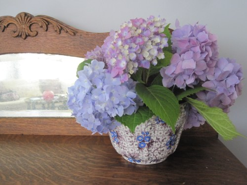hydrangeas in transferware bowl