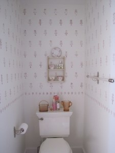 toilet side master bath