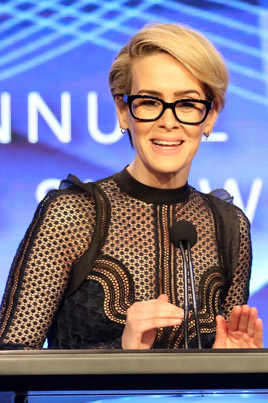 Get It Girl Wallpaper Sarah Paulson In Self Portrait At The 2016 Summer Tca Tour